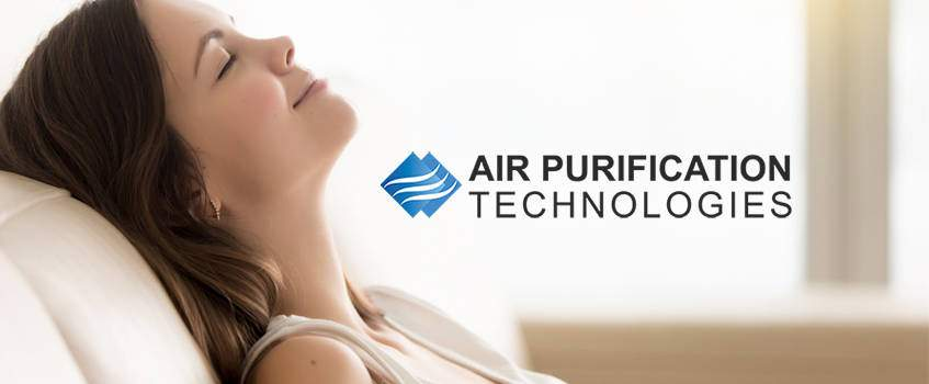 The REME Halo Technology House Air Purifier